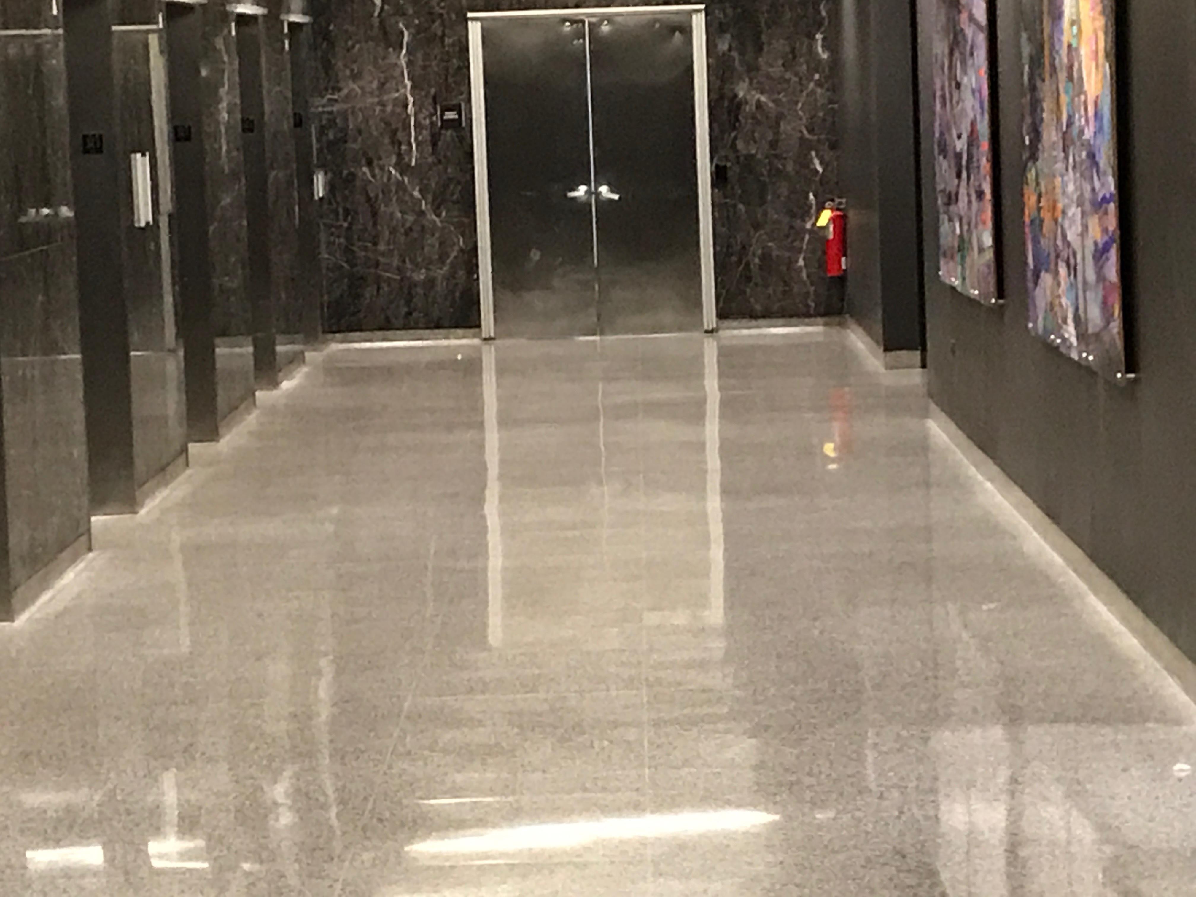 Terrazzo Floor Polishing Chicago IL
